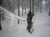 ricci-und-der-bar-winter.jpg